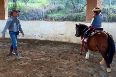 pony2ok