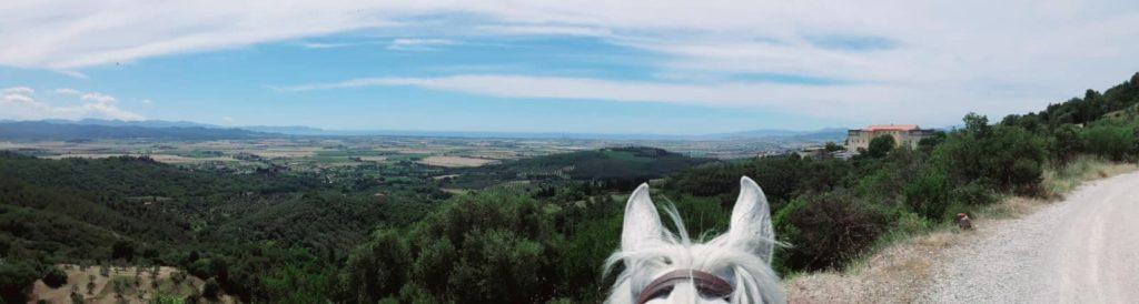 Panorama mozzafiato dalle colline di Suvereto e Campiglia marittima