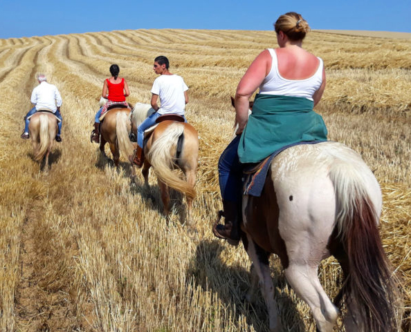 Passeggiate con partenza dal maneggio verso i vigneti interni alla tenuta, così come nelle colline circostanti